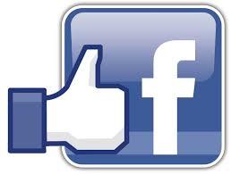 Facebook Carrera Solidaria Palmones